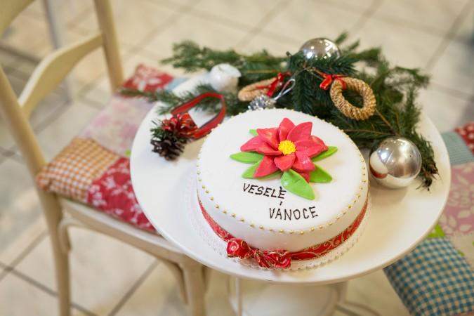 Vánoční Stracciatella: 749,-